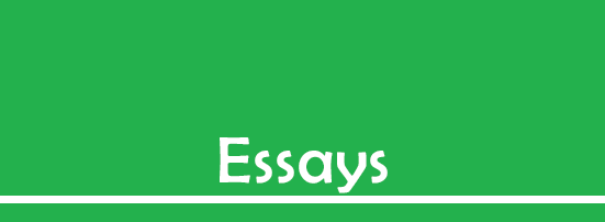 Englisharp: Essays